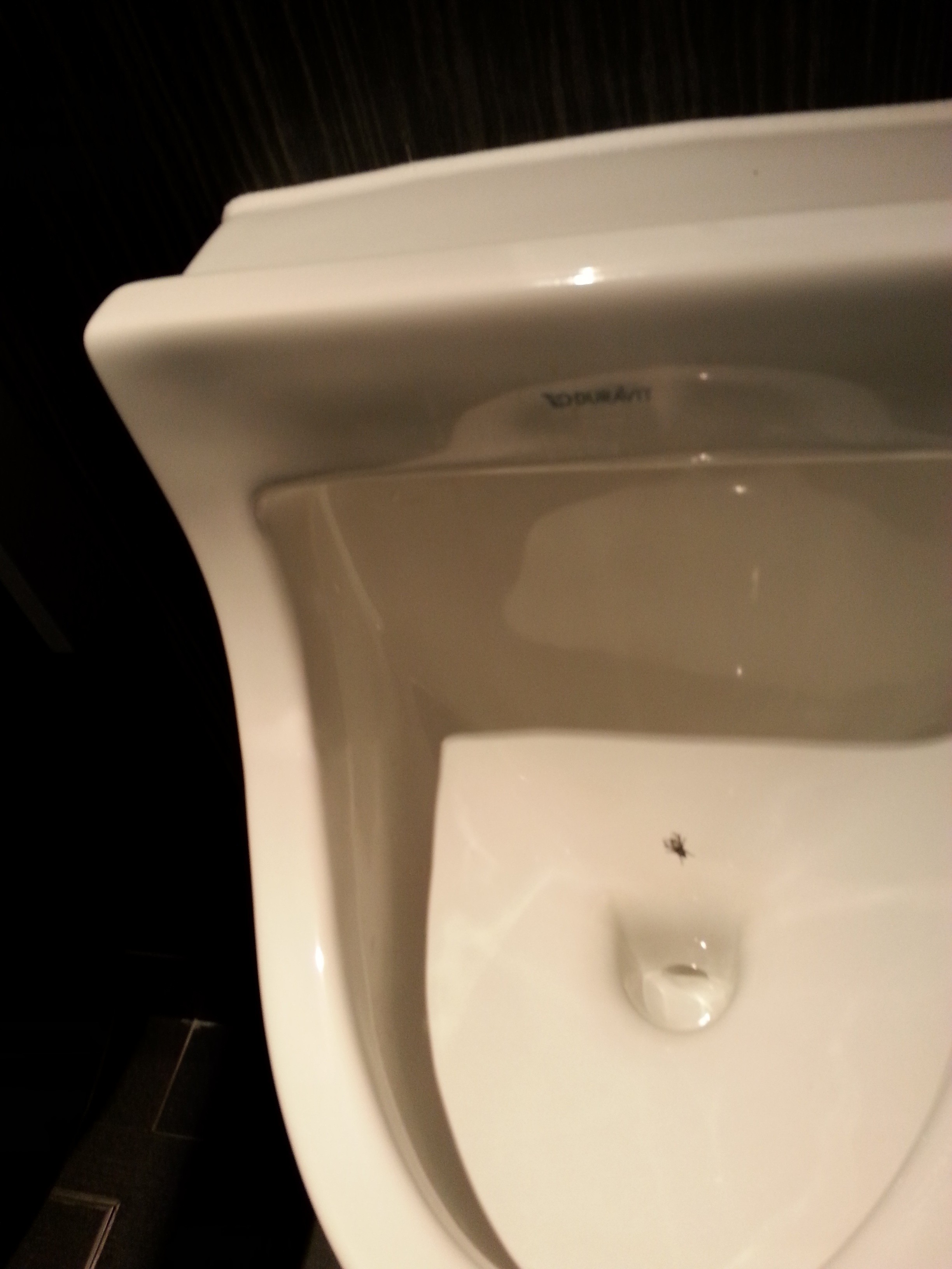 What do charities and flies in urinals have in common?