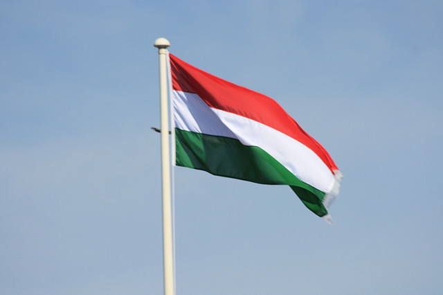 Charities – think like a Hungarian!
