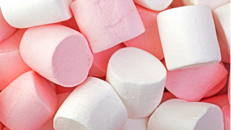 What marshmallows can teach us about fundraising